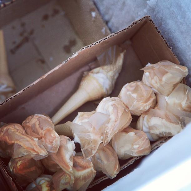 Ready Made Cone Ice-cream, Dah Siap Letak Plastik | Shalimar Garden, Old Lahore City | Lahore, Punjab Province PAK