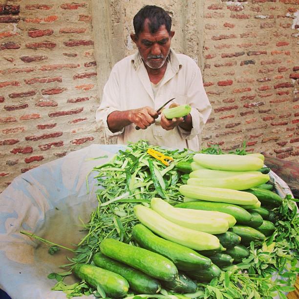 Penjual Timun Segar | Near Lahore Fort | Old Lahore City, Punjab Province PAK