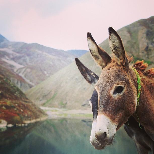 #Eh Hai ! | #EnterFrame | Lulusar Lake, Kaghan Valley | Khyber Pakhtoonkhwa Province PAK