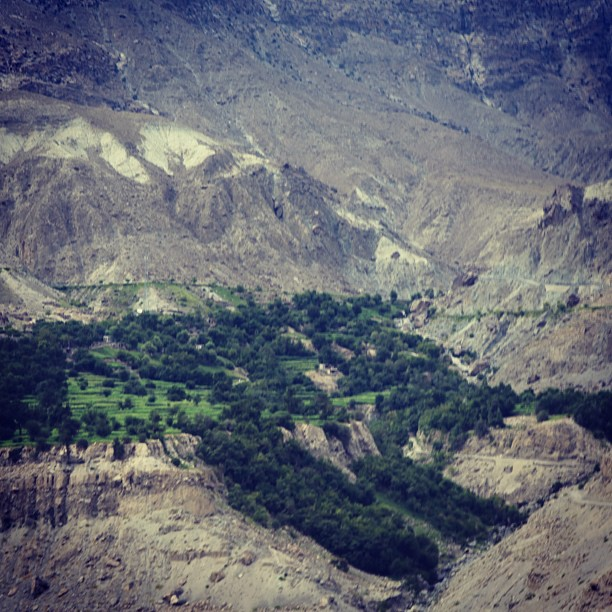 Green Valley | Along the Karakoram Highway | Gilgit-Bastistan, Northern PAK