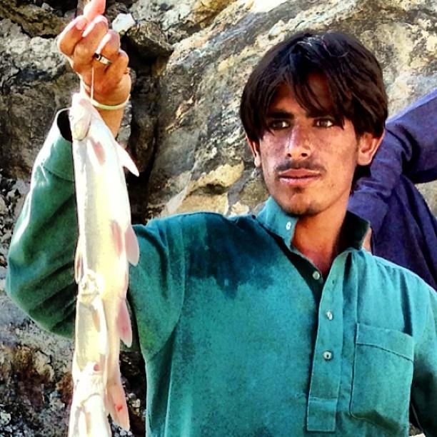 Close Up The Fresh Trout Fish | Near Raikot Valley | Karakoram Highway | Gilgit Baltistan | Northern Pakistan