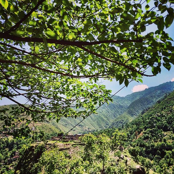 Lihatlah Sekitar Alam, Dunia Luas Terbentang. Langit Tinggi Kebiruan, Pohon-Pohon Kehijauan. Lembut Sang Bayu Yang Menyegarkan | Battagram | Road Less Travelled | Karakoram Highway | Khyber Pakhtoonkhwa Province, Pakistan