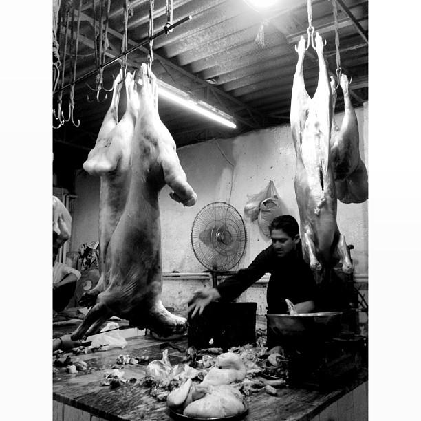 #Dumba BBQ | #Shinwari | Islamabad, Pakistan
