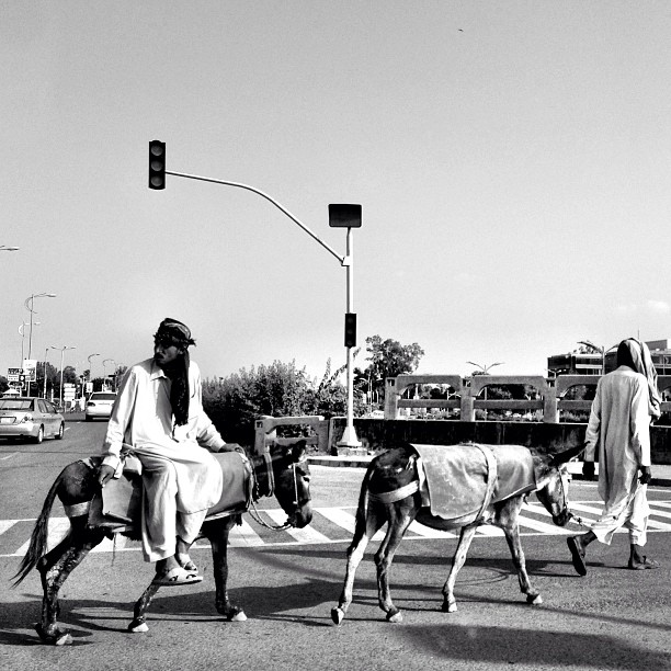 Feeling2 Silk Road Gittew | Somewhere Near Jinnah Avenue | Islamabad, Pakistan