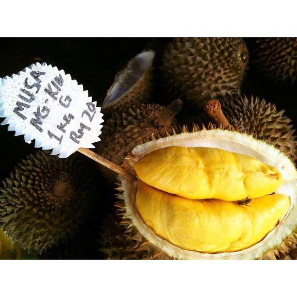 Musang King Memang Terbaek ! | Pasar Payang, Kuala Terengganu | Terengganu, Malaysia