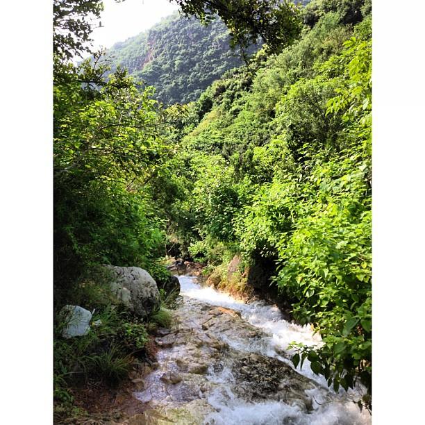 Merdeka Day Hiking | #Trail 5 Dara Janglan | Siap Tersesat ke Trail 6 Haha | Waterfall | #Islamabad, Pakistan