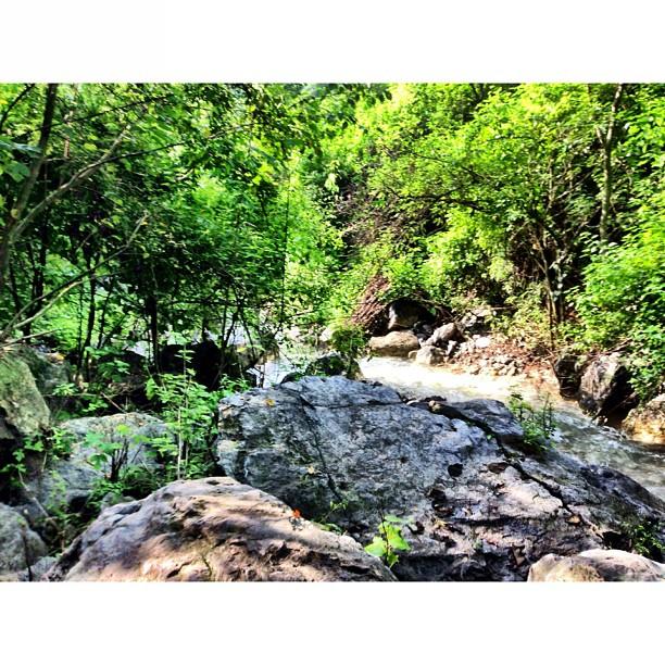Kalau Sampai Kuala Kubu, Tulis Nama Atas Batu | Merdeka Day Hiking | Trail 5 & 6 | Dara #Janglan | Monsoon Season + Stream Full of Water Everywhere | #Margalla Hill National Park | Sesat Barat Ke Trail 6 | iPhoneography | #Islamabad, Pakistan