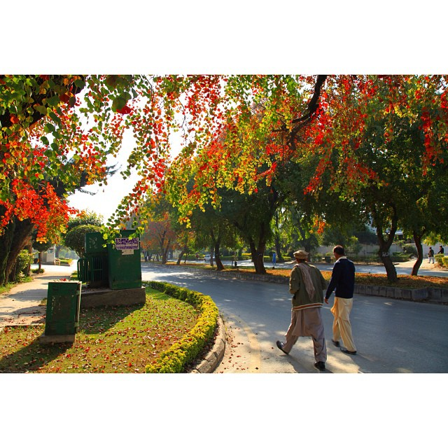 United Colours of Autumn Season | #Autumn 2011 | Throwback | #Marvi Rd, Near #Jinnah Super Market | #Islamabad, #Pakistan