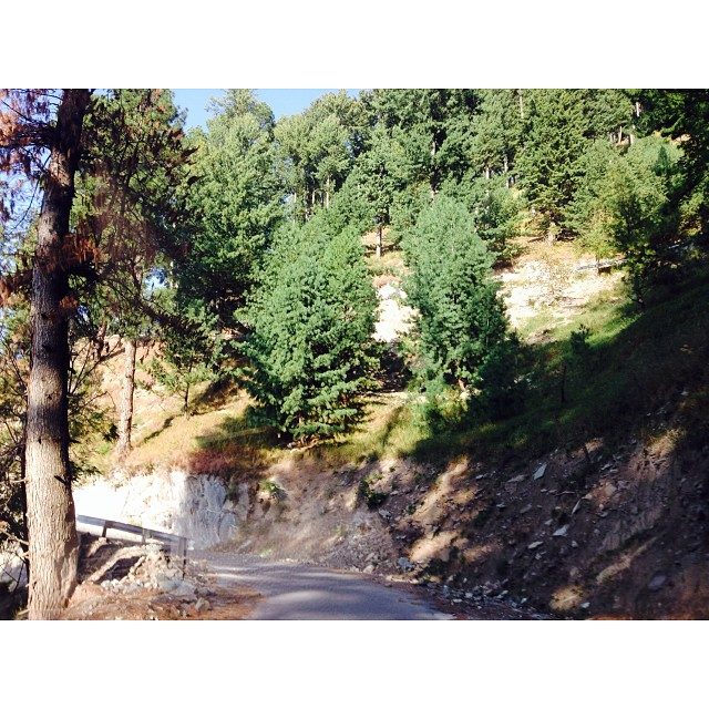 Paved Road to #PineParkResort | #Shogran | #Autumn2013 | iPhoneography | #KarakoramHighway |  #KhyberPakhtunkhwa Province, Pakistan
