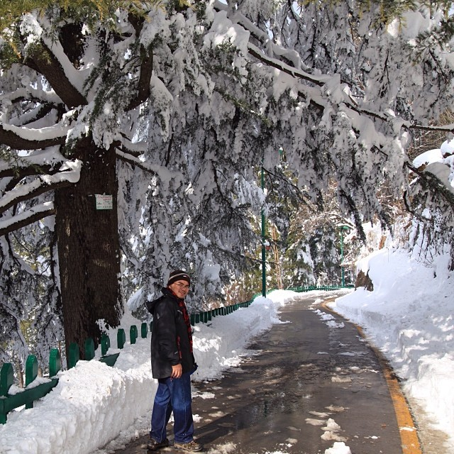 Thick Snow | #Winter 2012 | #Kashmir Point | #Murree Hill | The #Galliyat | Punjab Province | #Pakistan