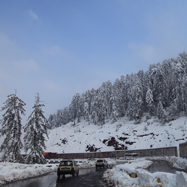 Thick Snow | #Winter 2012 | On the Way to #Kashmir Point | #Murree Hill | The #Galliyat | Punjab Province | #Pakistan