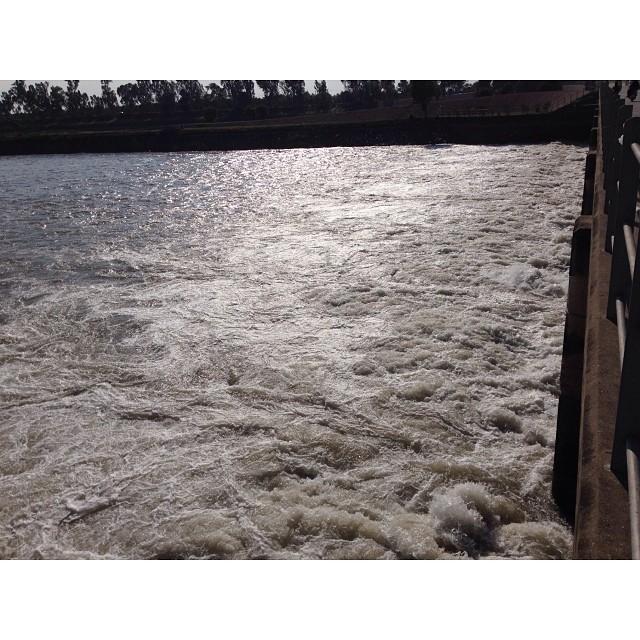 Head #Marala   River #Chenab   Gujrat Village   Wetland Park   iPhoneography   #Winter 2013   Road Less Travelled   Near #Sialkot   #Punjab Province, #Pakistan