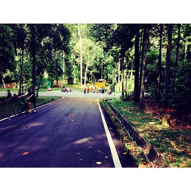 Taman Pertanian Bukit Cerakah | #KLMJ #VMY2014 #JJCM | #Feeling2HikingTrail3 #PanasGiler #ParkingTakCukop #AsamPedasMcmBestJe #AkuYgHikingKoYgPanas | Shah Alam, Selangor | Malaysia