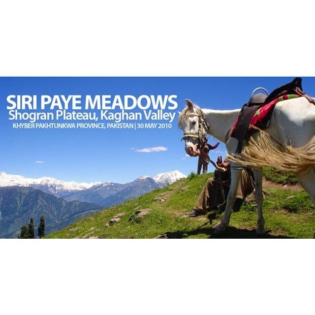 #SiriPaye Meadows | #Shogran | #CampakBelakang #PanasSiot #Summer2010 #KekudaKuLariGagahBerani  #KembaraPakistan | #KaghanValley | Khyber Pakhtoonkhwa Province, #Pakistan