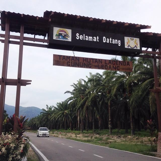 Taman Hutan Lagenda #GunungLedang | #TamanNegara | #Sagil | #Johor | Malaysia